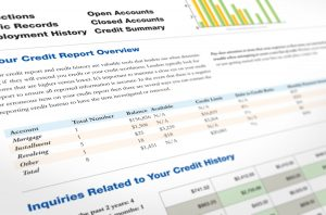 what's in a credit report | credit report summary